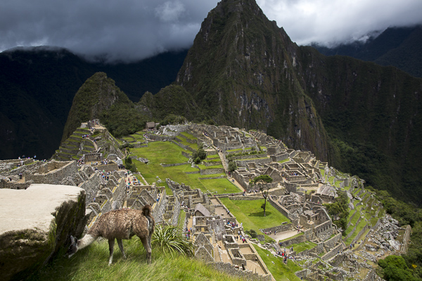 I, like Hiram Bingham, could not help but be astounded by my first glimpse of the sublime city. Shrouded in clouds, and punctuated by the intense green grass and vegetation of the wet Andes, the stone city is truly as otherwordly as the all the guidebooks proclaim.