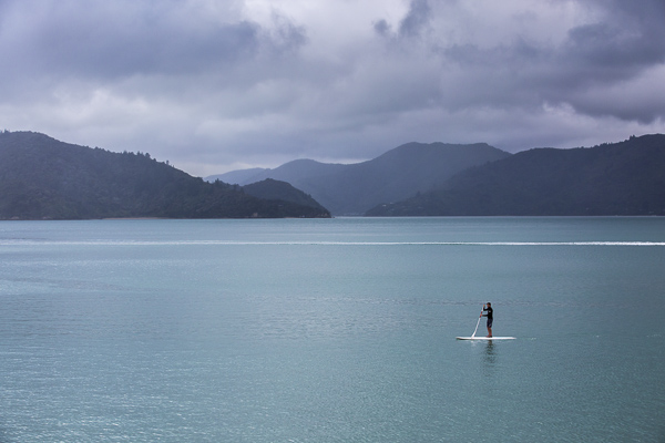"""Mark paddle boarding in New Zealand's Marlborough Sounds--so perfectly described as """"sea-drowned valleys"""". Our paddle boarding experience here included gliding over large winged stingrays and thousands of jellyfish."""