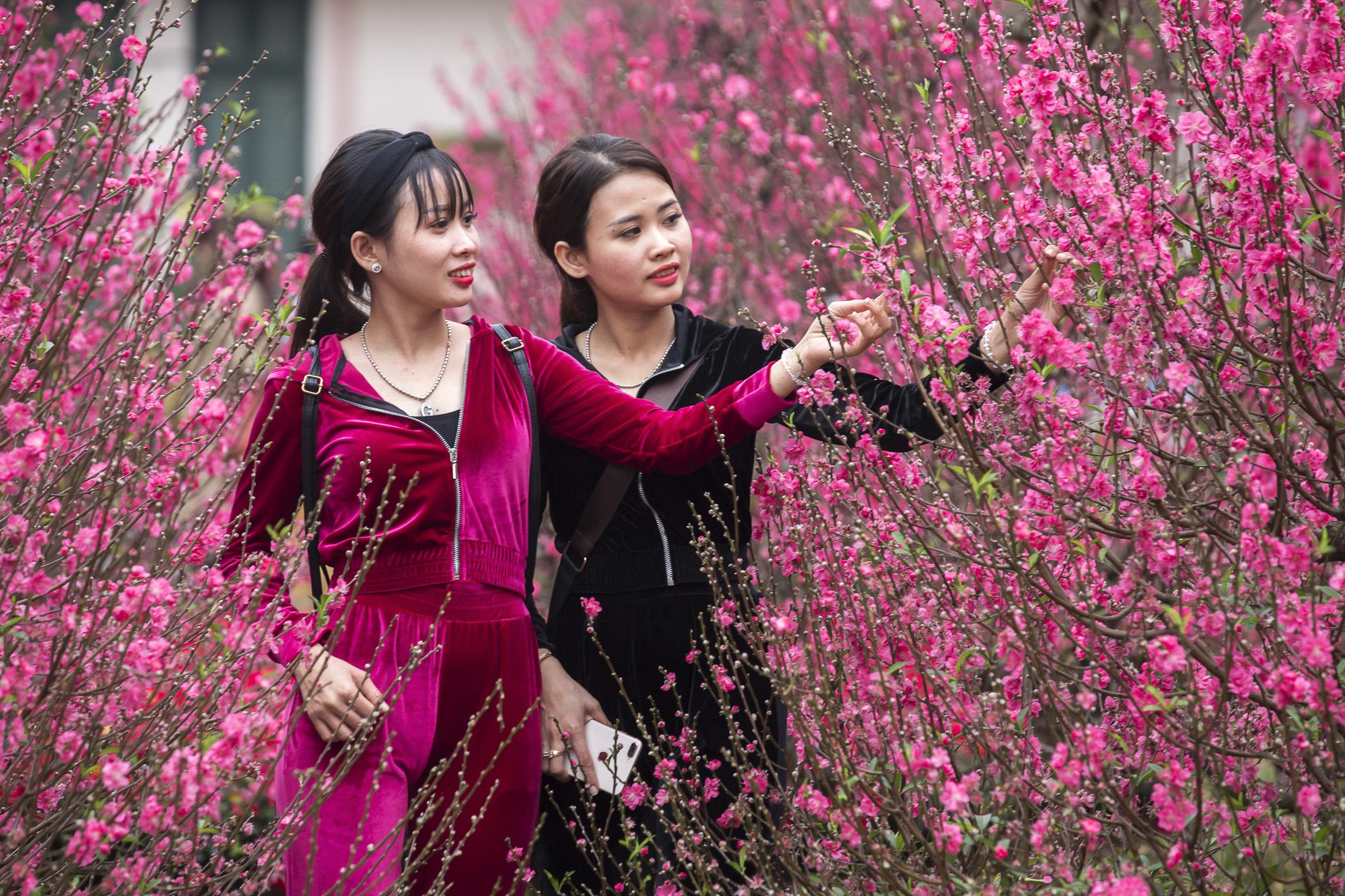 Vietnam_Images-003